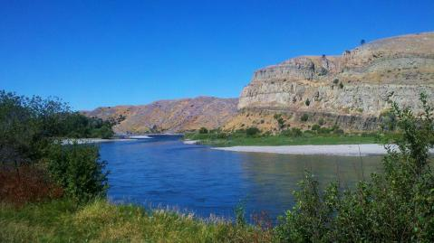The Yellowstone River, roughly 40 miles above the location of the pipeline spill. Photo by Brent Zundel