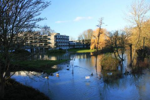 Uncontrollable flooding and the wettest winter in recorded history. Why wouldn't you want to move here?