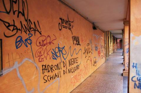 Graffiti on the outskirts of the university campus.