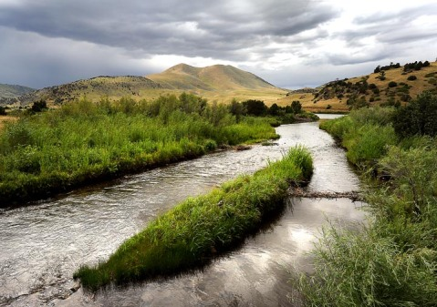 Cherry Creek, a tributary of the Madison River that flows mostly through Turner's private land, was poisoned between 2003 – 2010 and restocked with Westslope cutthroat trout. Photo courtesy Erik Petersen, Bozeman Daily Chronicle.